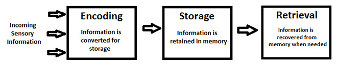 Encoding, storage and retrieval diagram